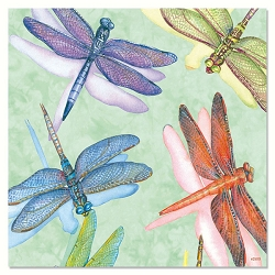 Dragonflies Eco Magnet