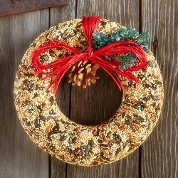 Wildfeast Edible Bird Seed Wreath