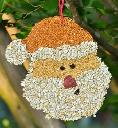 Santa Christmas Cookie Bird Seed Ornament Set of 12