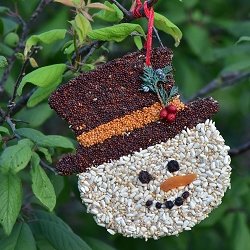 Frosty Christmas Cookie Bird Seed Ornament Set of 12