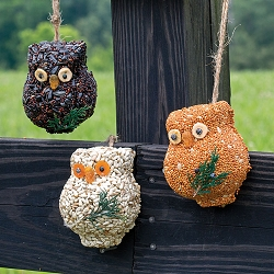 Ollie the Owl Bird Seed Ornament Set of 6