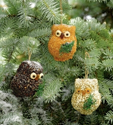 Ollie the Owl Bird Seed Ornament Gift Box