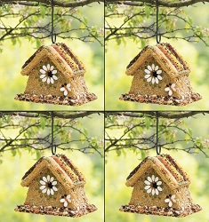 Rustic Wren Edible Birdhouse 4/Pack