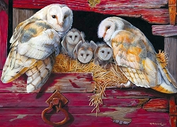 Barn Owls 1000 Piece Jigsaw Puzzle
