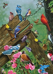 Birds of the Forest 1000 Piece Jigsaw Puzzle