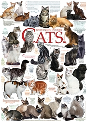 Cat Quotes 1000 Piece Jigsaw Puzzle