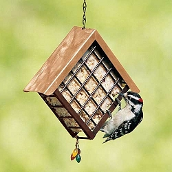 Deluxe Copper Roof Metal Suet Cage Feeder Set of 2