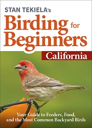 Birding For Beginners Guide California