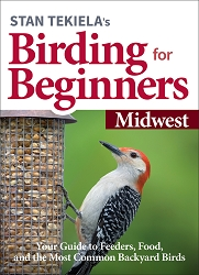 Birding For Beginners Guide Midwest