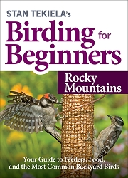 Birding For Beginners Guide Rocky Mountains