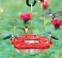 HummZinger Square HighView Hummingbird Feeder 8 oz.
