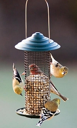 Audubon Mini Magnum Sunflower/Peanut Feeder