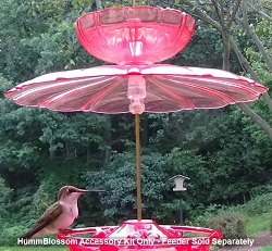 HummBlossom Hummingbird Feeder Accessory Kit