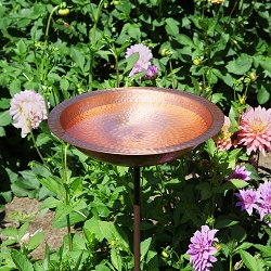Achla Hammered Solid Copper Birdbath with Stake