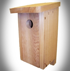 Cedar Songbird Bird House Kit