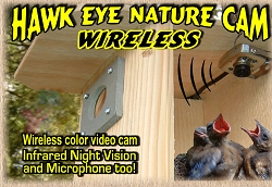 Hawk Eye Wireless Nature Video Camera