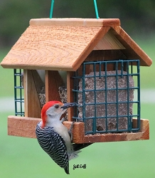 Double Option Cedar Hopper Feeder w/Suet Cages