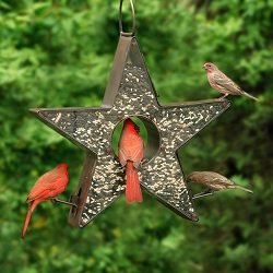 Star Fly-Thru Copper Bird Feeder