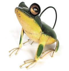 Tree Frog Watering Can