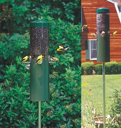 Classic Bird Feeder with Squirrel Baffle and Pole