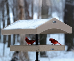 Birds Choice Recycled Plastic Covered Pole Mount Platform Feeder with Pole Kit