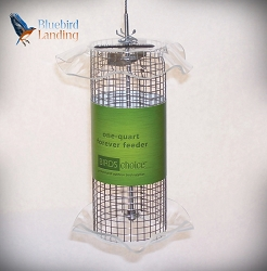 Forever Sunflower Feeder 1 Quart Clear Set of 2