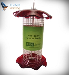 Forever Sunflower Feeder 1 Quart Red Set of 2