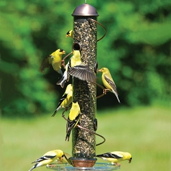 Bird Quest Copper Spiral Sunflower Feeder 17