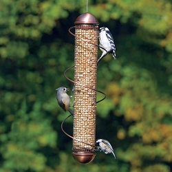 Bird Quest Copper Spiral Peanut Feeder 17