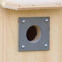 Conservation Bird House Slate Squirrel Guard Set of 3