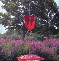 Droll Yankees Little Flyer 4 Hummingbird Feeder with Red Ant Moat