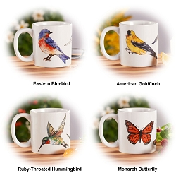 Field Guide Songbird & Butterfly Collection Ceramic Coffee Mug Set of 4