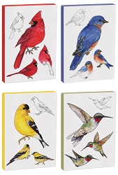 Field Guide 5x7 Canvas Bird Print Collection Set of 4