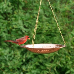 Hammered Solid Copper Hanging Bird Bath