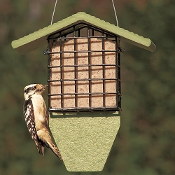 Green Solutions Recycled Plastic Tail Prop Suet Feeder