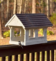 Columbia Covered Bridge Fly-Through Bird Feeder