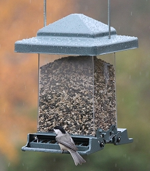Audubon Vista Squirrel Proof Bird Feeder