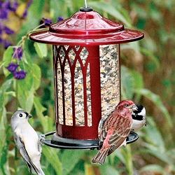 Classic Garden Arch Jolly Pop Red Bird Feeder Set of 2