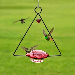 Hummingbird Swing Feeder Set of 2