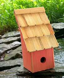 Fruit Coops Bird House
