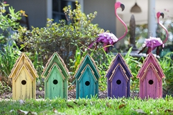 Bluebird Brights Birdhouse Collection Set of 5