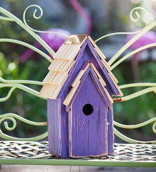 Bluebird Brights Birdhouse Purple