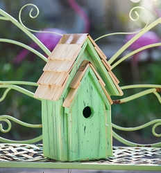 Bluebird Brights Birdhouse Green