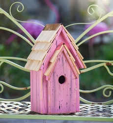 Bluebird Brights Birdhouse Pink