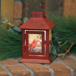 Rustic Cardinals LED Coach Lantern