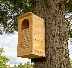 Barred Owl Nesting Box Assembled