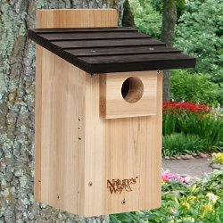 Cedar Series Bluebird Box Viewing House