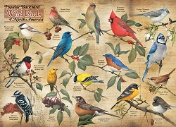 Popular Backyard Birds of North America 1000 Piece Jigsaw Puzzle