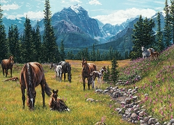 Horse Meadow 1000 Piece Jigsaw Puzzle