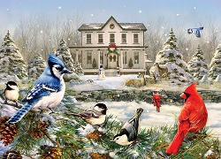 Country House Birds 1000 Piece Jigsaw Puzzle